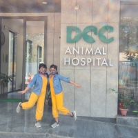 DCC Pet care - Best Place for pets in Delhi NCR